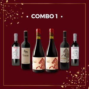 COMBO 1 FIESTAS 2020! – Caja x 6