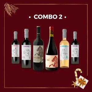 COMBO 2 FIESTAS 2020! – Caja x 6