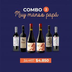 COMBO 2 Manso Papá! – Caja x 6